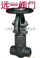Z61Y-900Lb~2500lb自密封锻钢閘閥