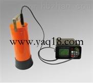 供应便携式γ能谱仪