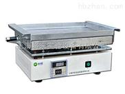 L0033890價格,不鏽鋼電熱板