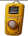 R10型氧气检测仪/氧气泄漏检测仪