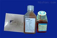 尿道定位显色培養基