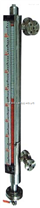 QWD-UDZ-1 W,UDZ-3 W/B保温型磁浮子翻板指示液位计