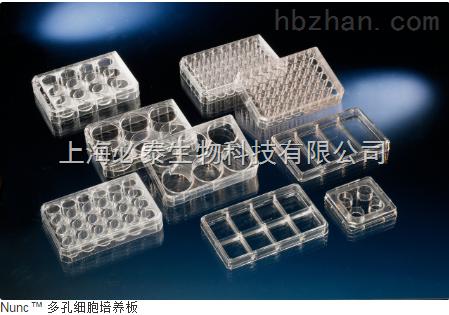 NUNC 24孔细胞培养板货号142475