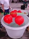 FQ江苏水上橙色塑料浮球 警示浮体厂家