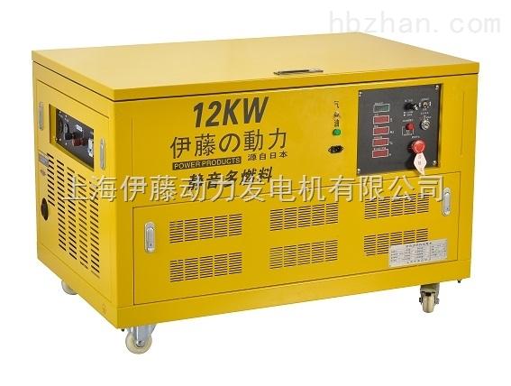 YT12RGF-ATS全自动汽油发电机