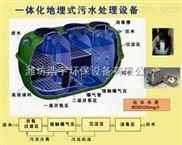 HYYTH-1养殖粪便污水处理设备