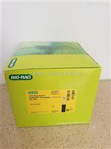 Bio-Rad伯乐TGX Stain-Free丙烯酰胺免染制胶试剂盒161-0183