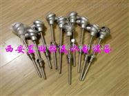 隔爆热电阻WZP-240-B