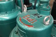 BQW75-42-22/N矿用防爆潜水排污泵(防爆等级ExdIIBT4)