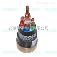 WDZ-FSY-YJY23-3*25+1*16電力電纜