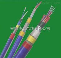 ZR-KJVVPR 20*1.0儀表電纜