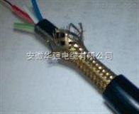 RVVP信號屏蔽儀表電纜
