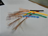 227IEC02RV電線