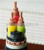 變頻電纜BPFFPP2 3*10+3*2.5