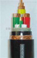 BPGVFP2變頻電纜