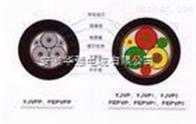 zc-bpyjv-0.6/1kv 3*185+3*25變頻電纜