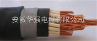 KYJVP2-22 2*2.5鎧裝控製電纜