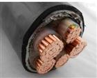ZRC-VVR22-1KV 3*25铠装电缆