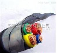 鎧裝電纜 VV22 3*95