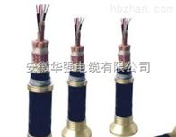 DJFPVRP 10*2*1.0高溫屏蔽電纜