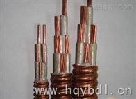 BBTR(Z)-4*2.5礦物質電纜