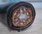 ZR-DJYVRP2-22 3*2*2.5屏蔽铠装电缆