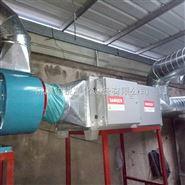 辽宁葫芦岛油漆废气处理设备