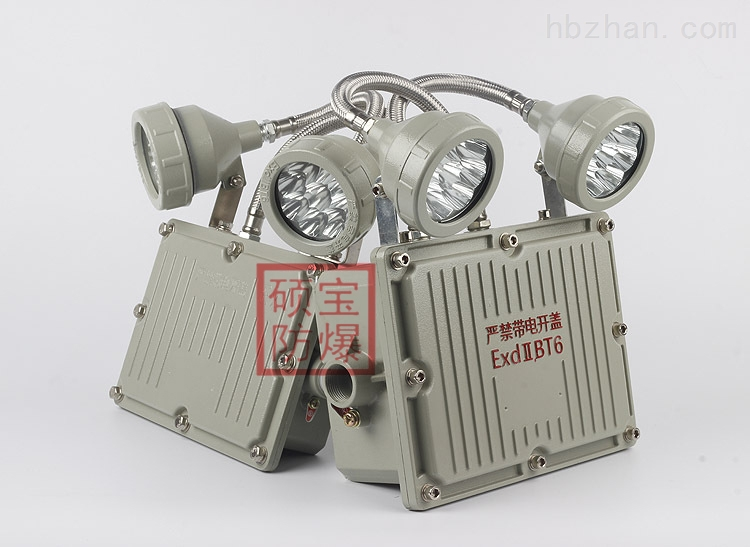 BCJ52系列防爆双头应急灯