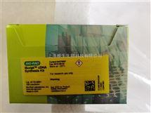 Bio-Rad伯乐iScript cDNA合成试剂盒1708891
