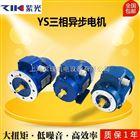 紫光三相异步电机,紫光马达上海梁瑾机电设备有限公司