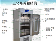 150L小型恒温生化培养箱生产厂家(山东博科)