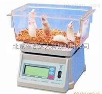 称量实验大小鼠专用电子秤 型号:JV22-DST-671 库号:M370603