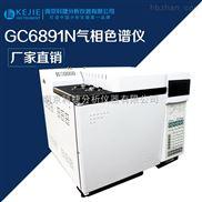 GC6891N-气相色谱分析仪