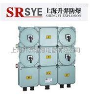 BXX52系列防爆检修动力箱