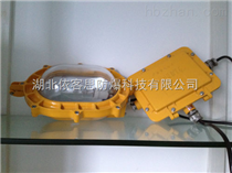 BAT52-400潜江油站用防爆强光泛光灯