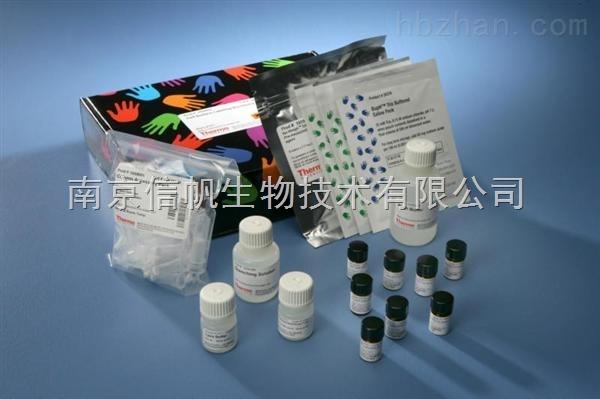 小鼠白三烯C4elisa试剂盒