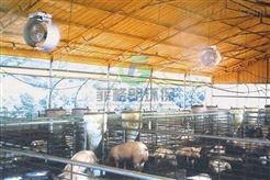南昌家禽市场智能环保喷雾杀菌消毒设备/专业喷雾消毒工程技术