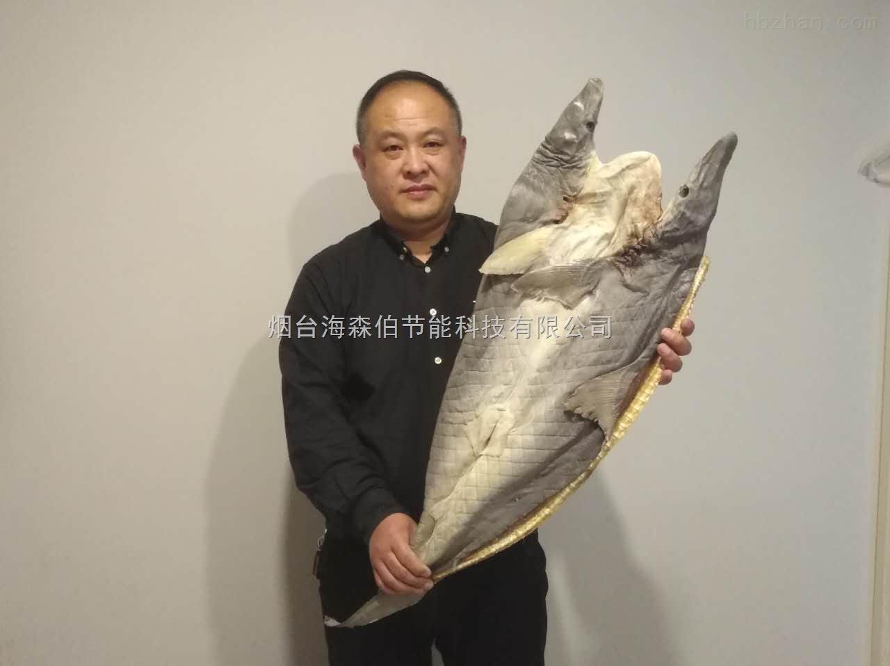 烟台海森伯海产品烘干系统跨界烘干淡水鱼 是海产品烘干系统运行的