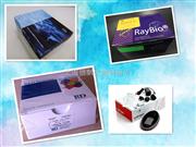小鼠TBA elisa试剂盒,总胆汁酸检测