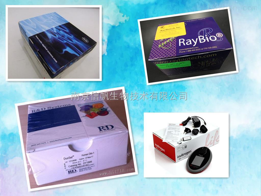 小鼠α干扰素elisa试剂盒