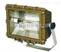 SBD1109免维护节能防爆泛光灯