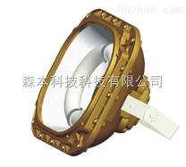 SBD1130免维护节能防爆泛光灯