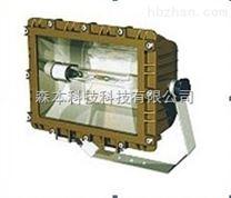 SBF6109免维护节能防水防尘防腐泛光灯