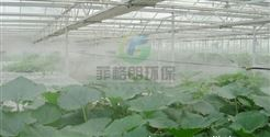湘潭公园喷雾造景设备价格/景区水雾景观人造雾系统/风景区人造烟雾自动喷雾机