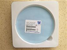 Millipore密理博142mm直径聚碳酸酯PC膜0.2um孔径GTTP14250