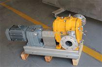 XZ120-S供应MORAK旋转凸轮泵