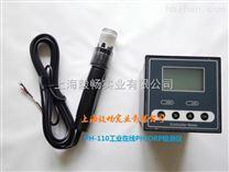 PH-110在线PH计工业PH监测仪