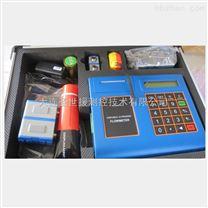 黃驊聖世援超聲波流量計便攜式TUF-2000P批發供應