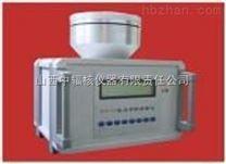 固定式X、γ劑量率儀放射人員專用