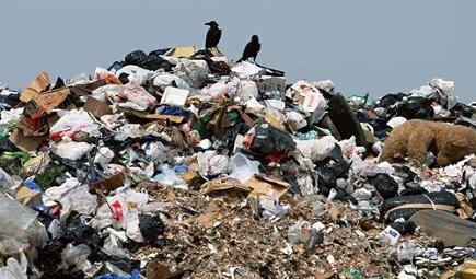 拖欠3年清运费未缴纳 杭州一小区垃圾堆积如山